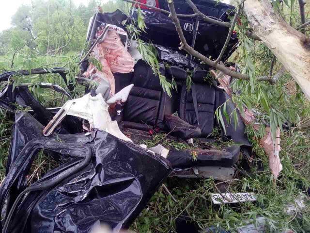 Ввылетевшей под Киевом сдороги Honda погибли три человека