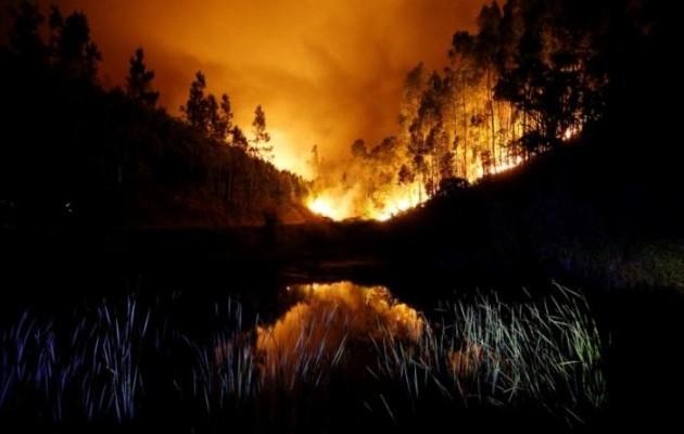 Українців серед жертв лісових пожеж уПортугалії немає - МЗС
