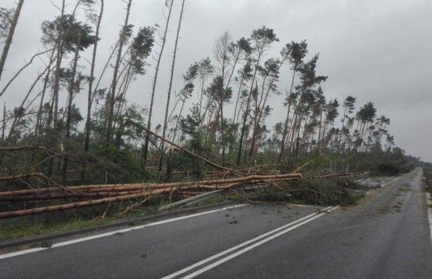 ВПольше 5 человек погибли из-за урагана