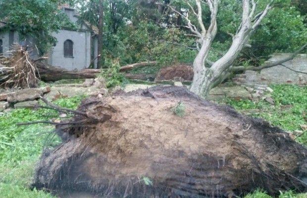 Вовласти гроз: непогода вПольше унесла жизни 5-ти  человек