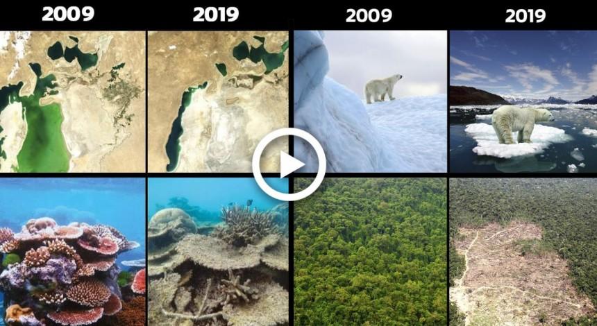 Flešmob #10YearChallenge v ekolohiї: ščo vtratyla planeta za 10 rokiv (video)