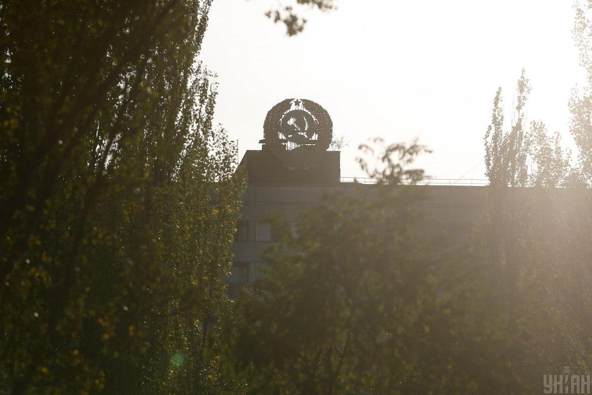 Баварські гриби досі радіоактивні через Чорнобильську катастрофу / Фото УНІАН