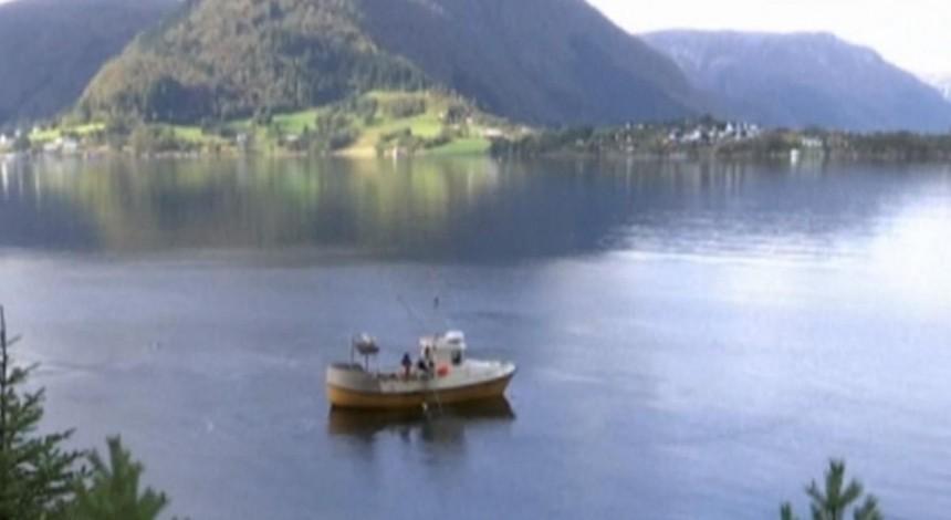 """З рибної ферми в Норвегії """"втекли"""" 10 тисяч лососів (відео)"""