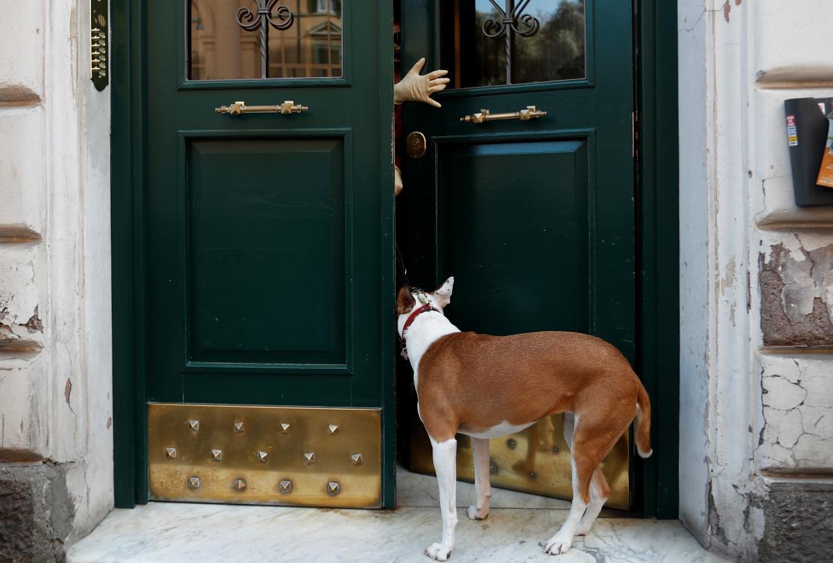 В Одесской области злоумышленник повредил машину соседей и натравил на них собаку