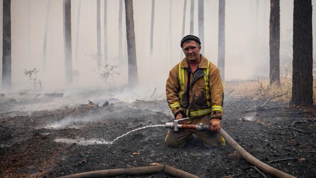 Запрет сжигать сухую траву — Зеленский подписал закон — УНИАН