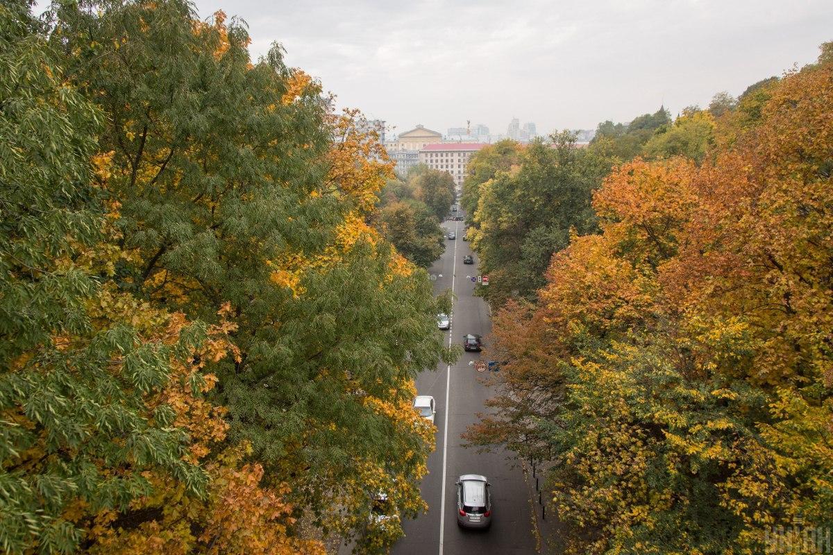 Погода в Украине на 6 ноября