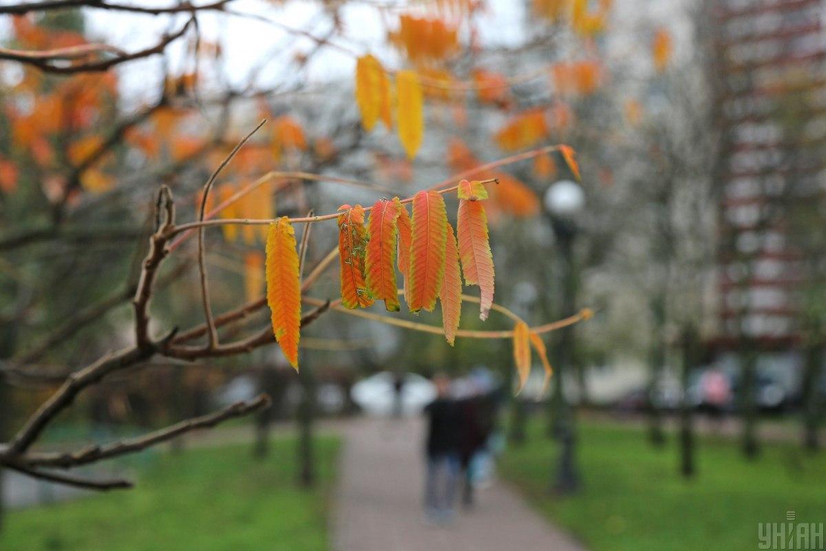 Погода в Киеве на 17 ноября