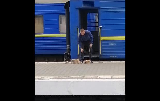 1607324814 3130 - Проводник рубит дрова для поезда