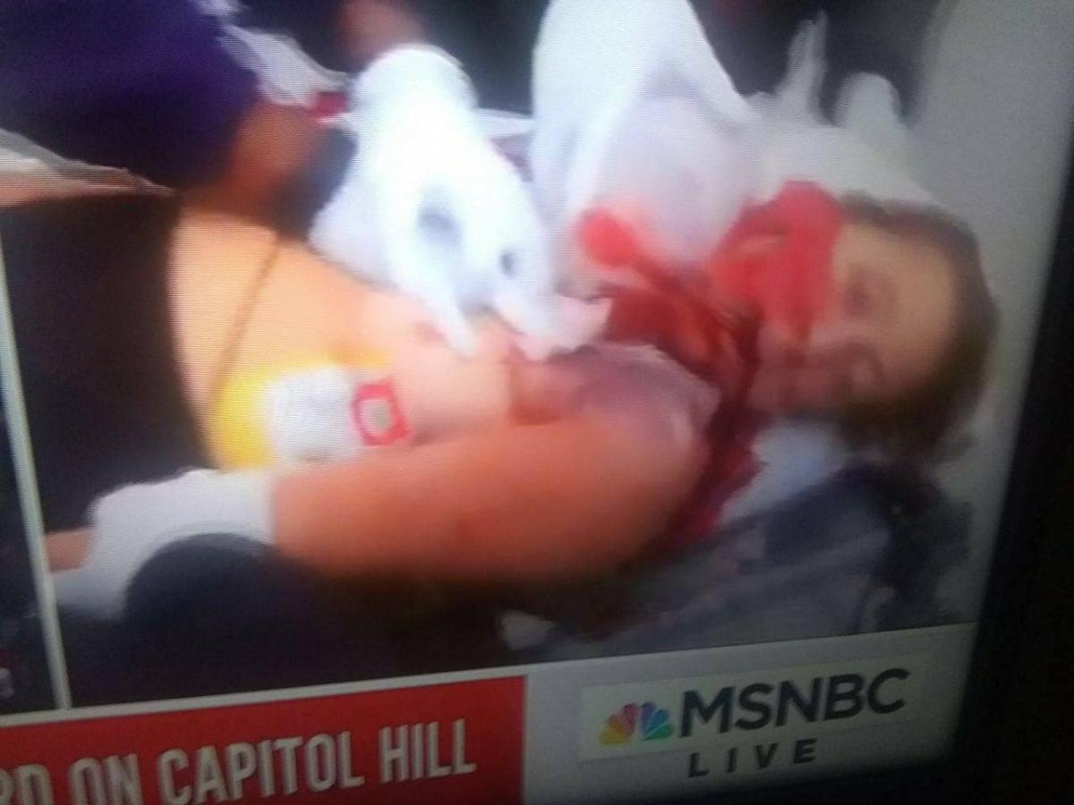В Капитолии началась стрельба, ранена девушка — Новости мира —