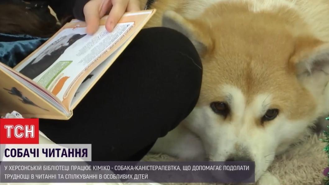 Собака в библиотеке — в херсонской библиотеке работает собака