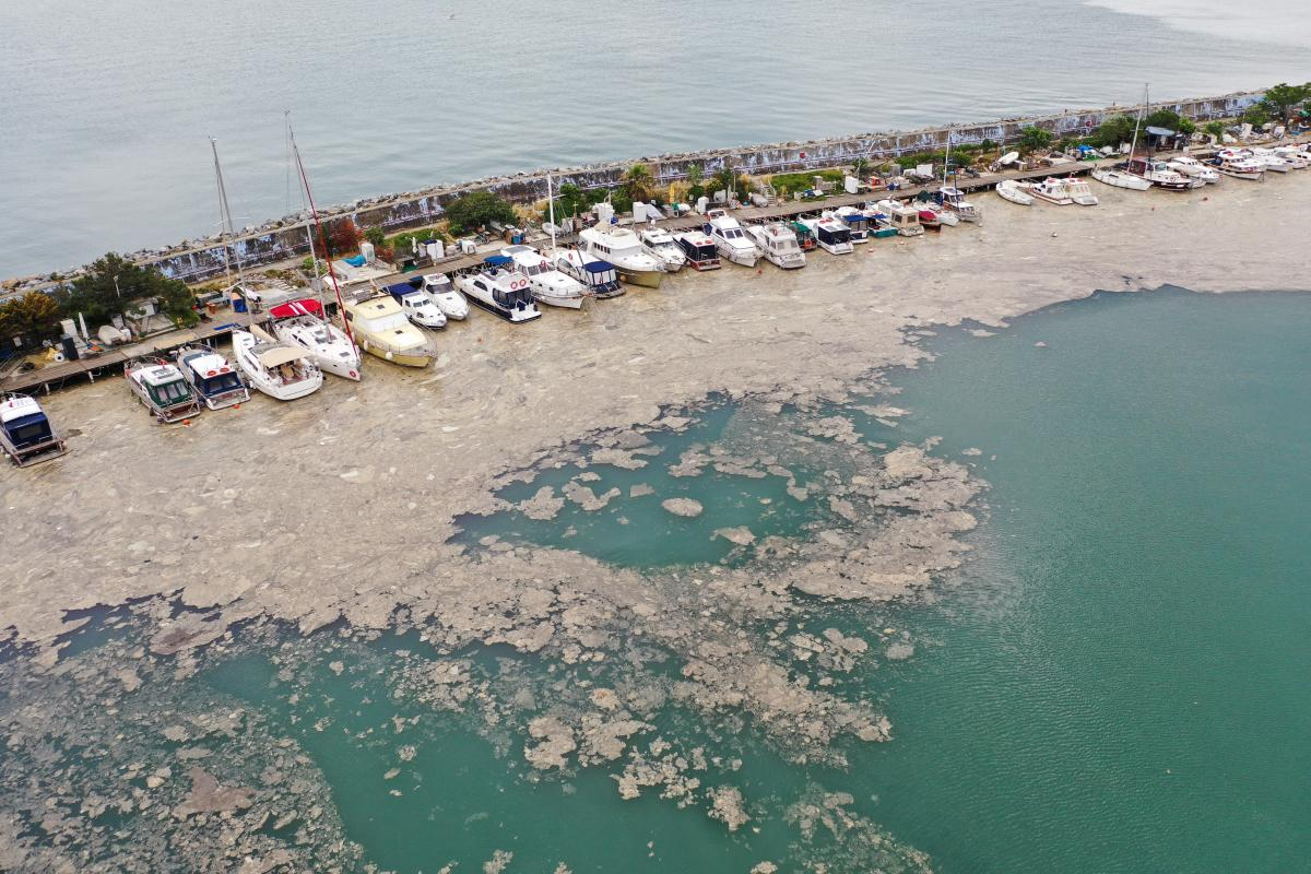 Мраморное море покрылось слизью вдоль побережья Турции: под угрозой Черное море