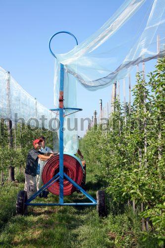 Photo Worker assemble anti-hail netting - UNIAN