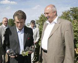Виктор Ющенко и Иван Плачков осматривают виноград в Болградском районе Одесской области. 17 сентября