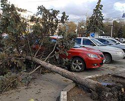 Наслідки шторму в Симферополі. Крим, 12 листопада