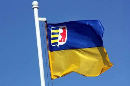 The offcial flag of Zakarpattia region