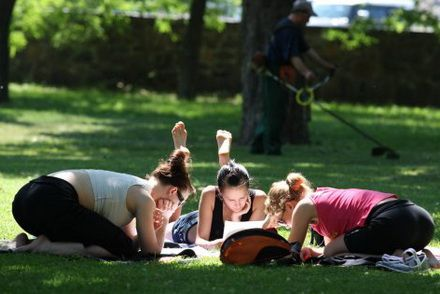 студенты молодежь студенты парк отдых