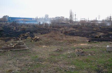 В центре Херсона горело старинное еврейское кладбище, фото с сайта  Kherson.pro