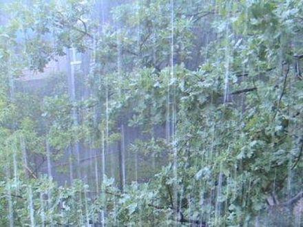 В двух областях - сильные дожди