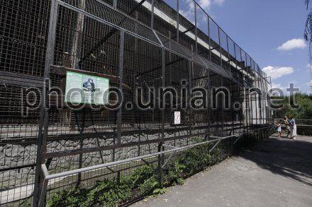 Недостроенный павильон для человекообразных обезьян в Киевском зоопарке