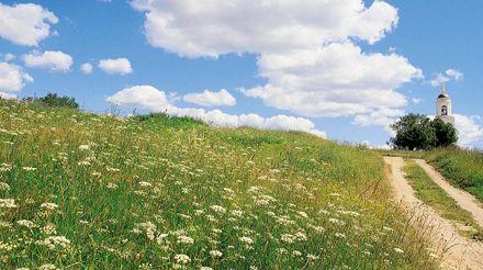 В Украине завтра днем 21-26 ° тепла