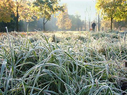 9-12 октября в западных, северных и в центральных областях Украины синоптики прогнозируют заморозки