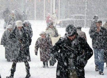 снег, зима / Фото : vk.com, Юля Кареліна