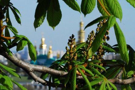 В Украину пришло тепло / Фото: photo.i.ua, Oboltus