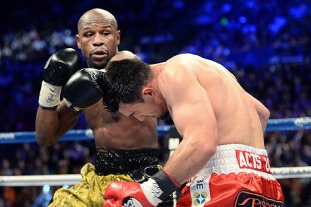 Всего на профессиональном ринге 36-летний Мейуэзер провел 44 боя / Фото: USA Today