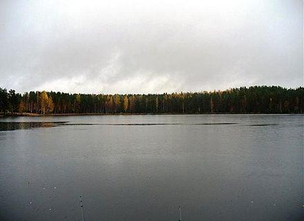озеро Монетка / Фото: wikimapia.org