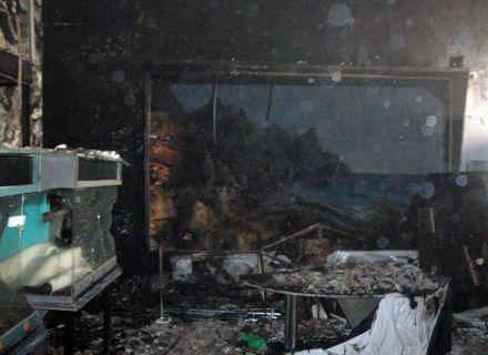 пожар в музее / Фото: mns.gov.ua