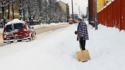 / Фото : tvnet.lv