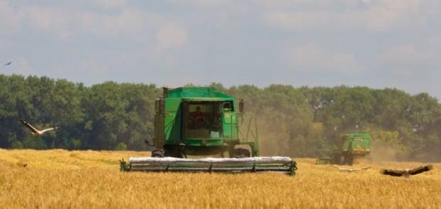 Правительство хочет изменить налогообложение аграриев / Фото УНИАН