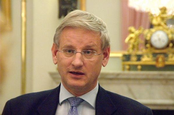 Бильдт раскритиковал путинскую предложение относительно миротворцев на Донбассе / фото wikipedia.org