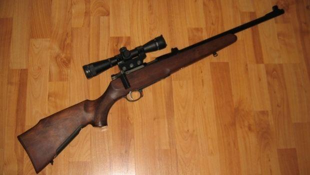 Мать расстреляла малолетних дочерей / Фото popgun.ru