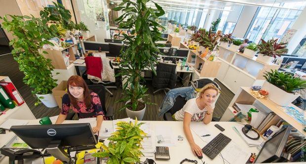 Названа главная опасность работы в офисах / Фото: NedoSMI.ru