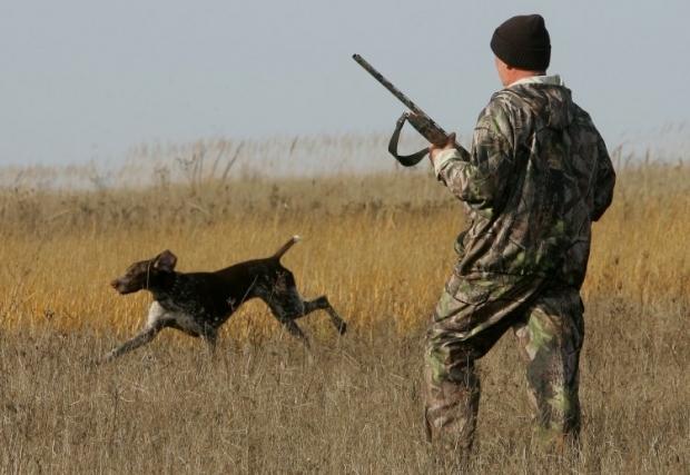 На сьогодні в Україні відсутня ефективна система моніторингу чисельності червонокнижних видів тварин / Фото: УНІАН