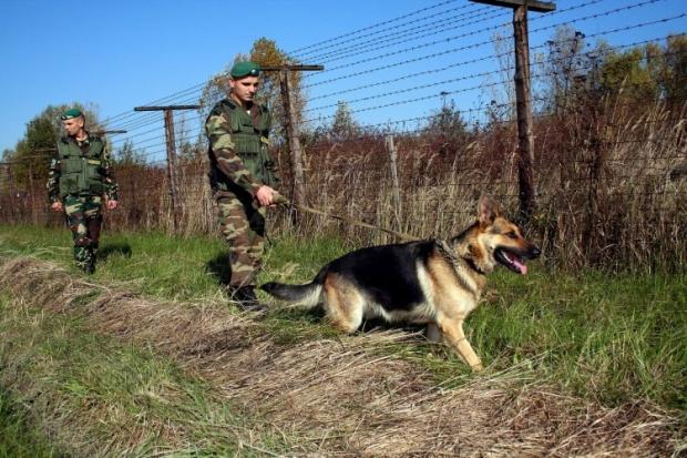 Пограничники получили технику и оборудование от США / Фото УНИАН