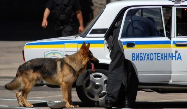 Взрывчатку нашли по улице Академика Павлова / Фото УНИАН
