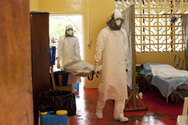 В Гвинеезафиксировали первый случай лихорадки Марбург / фото REUTERS