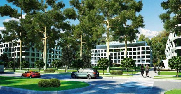 Зеленые насаждения позитивно сказываются на психике, стимулируют работу сердца / Фото: bionic-hill.com