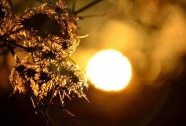 Синоптик предупредила о похолодании в Украине и рассказала, где будет теплее всего