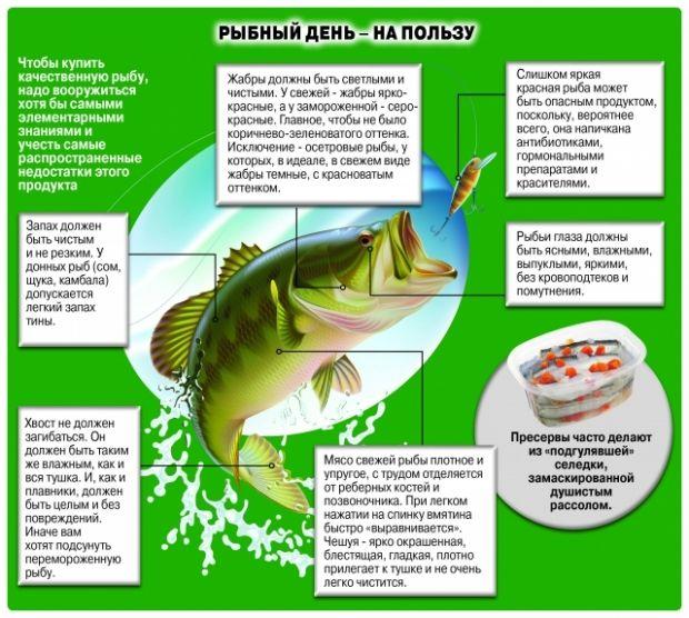 Фото: aif.ua