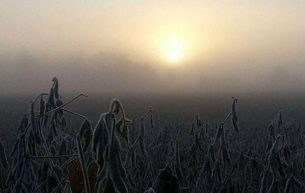 В Україну мчить похолодання / фото flickr.com, samv678