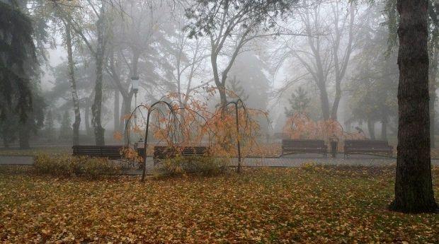В Украине стоит поздняя осень / flickr.com/photos/71667217@N03