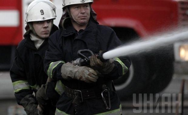 Потушить огонь в лесу, который разгорелся 1 мая, пожарным мешает ветер / Фото: УНИАН