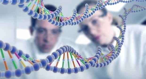 Разницу опухолей подсказывает структура ДНК / Фото: 062.ua
