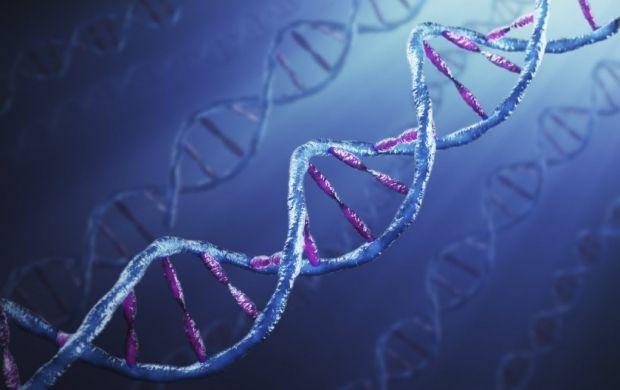 ВКембриджском университете создали трёхмёрную карту ДНК