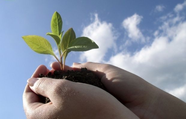 Сьогодні відбудеться Всесвітня акція «Очистимо світ» / фото studentperspectives.wordpress.com