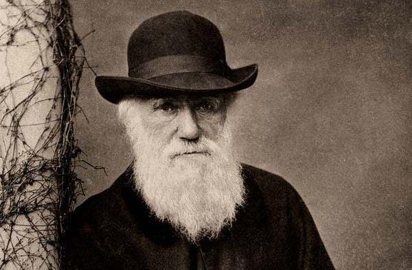 Дарвина считал,что первые клетки возникли в мелких теплых водоемах/ musliteli.com.ua
