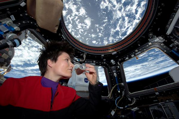 На Землю прибудет вино из космоса / фото AstroSamantha